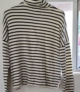Madewell blue and white  striped turtleneck shir